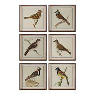 Uttermost Spring Soldiers Bird Prints, S/6