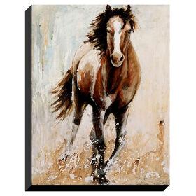 Picture of 36 X 48-in Horse Break Free Gallery Art