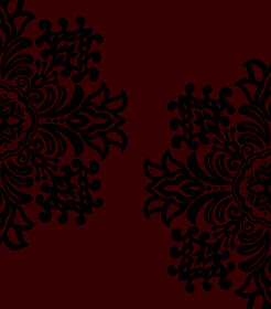 Picture of B105 Red and Black Medallion Rug