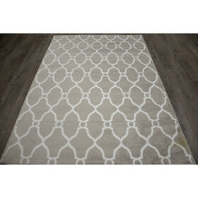 Picture of D47 Grey and White Moroccan Rug- 10x12 ft