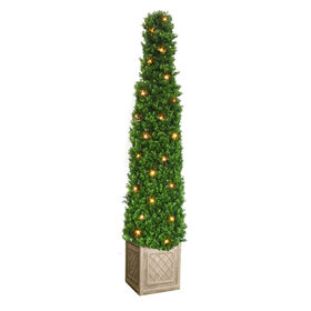 Picture of Pyramid Boxwood Topiary with Lights, 48-in