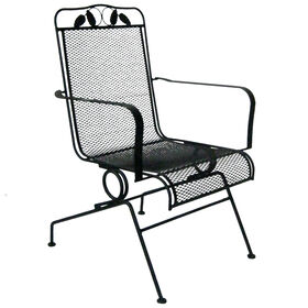 Picture of Black Wrought Iron Spring Base Sliding Chair