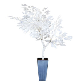 Picture of White Ficus Tree- 4-ft