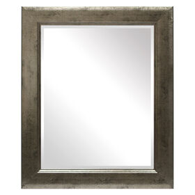 Picture of 22 X 28-in Distressed Silver Jane Mirror