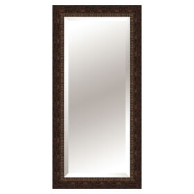 Picture of 24 X 60-in Antique Gold Beveled Mirror