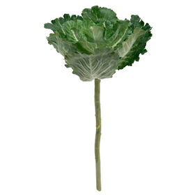 Picture of Polyester Cabbage With Stem - 13 in.