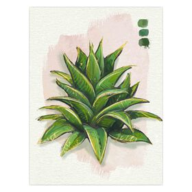 Succulent with Light Pink Canvas Art- 12 x 16-in