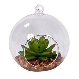 Picture of 4.5IN SUCCULENT HNG ORB