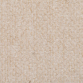 Picture of Assorted Carpet 2 X 3 ft