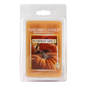 Picture of Pumpkin Spice Melting Wax