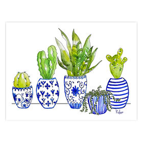 Picture of Cactus in Blue & White Pots- 12 x 16-in