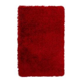 Picture of C24 Red Senses Shag Rug