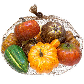 11 Count Assorted Bag Pumpkin and Gourd