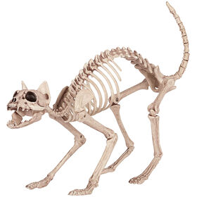 Picture of Skeleton Halloween Cat Decor