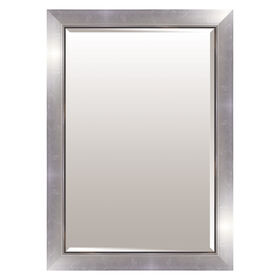 Picture of 24 X 36-in Metallic Silver Jackson Mirror