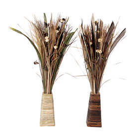 Picture of Dried Reed in Vase 46-in (Sold Separately)