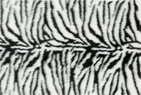 Picture of Zebra Faux Fur Shag Accent Rug 2 X 3 ft