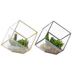 Geometric Succulent- 9 in.