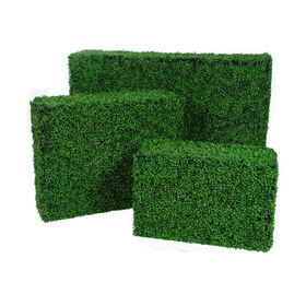 Picture of Rectangular Boxwood Hedge- 58x38 in. (sold separately)