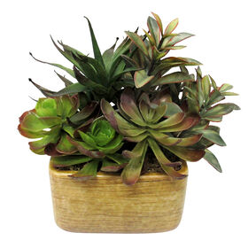 Picture of Succulent Mix in Yellow Ceramic Pot- 10 in.