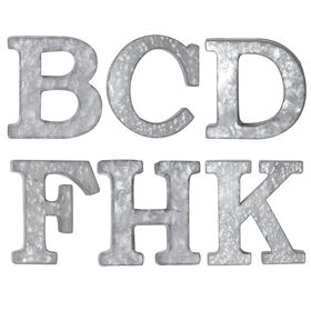 Picture of 12-in Galvanized Letter