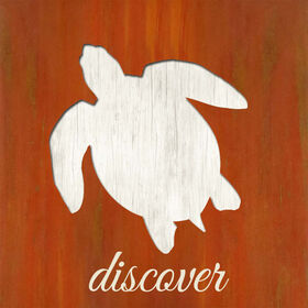 Picture of 20 X 20-in Discover Cutout Box