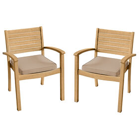 Picture of Eastham Eucalytus Set of Two Chairs
