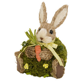 Picture of Moss Ball Bunny with Carrot- 8 in.
