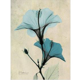 Picture of 16 X 20-in Blue Hibiscus Studio Art