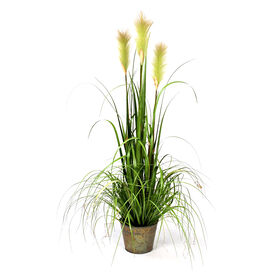 Picture of Reed Grass in Metal Pot 48 in.