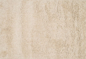 Picture of A41 Beige Shag Rug