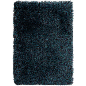 Picture of C18 Chocolate and Teal Shag Accent Rug- 27x42 in
