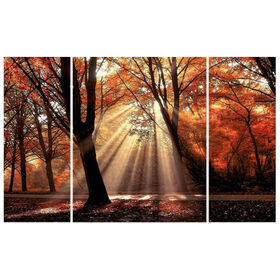 Picture of 44 X 28-in Trip Forest Gallery Art- 3 Piece