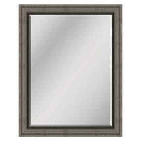 Picture of 36 X 48-in Beveled Silver & Bronze Mirror
