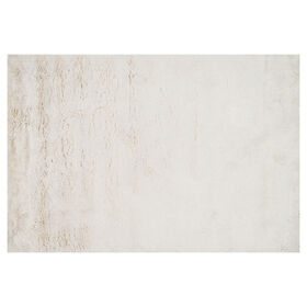 Picture of Ivory Feelings Accent Rug 27 X 45-in