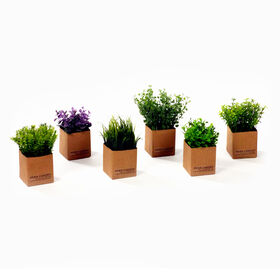 Picture of Greenery Herbs- 7 in.