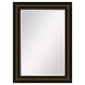 Picture of 24 X 36-in Two-Tone Bronze Mirror