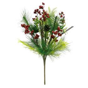 Berry Pine Bush