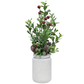Boxwood Red Berry in Glass Pot